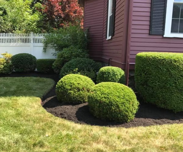 Ten Four Landscaping: Residential & Commercial Landscaper in Norfolk, MA - 37193452_668311063518326_7508725537859174400_n
